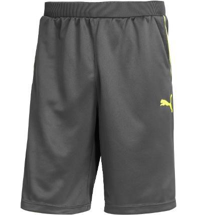 f98ba65734c1 PUMA Tennis Shorts