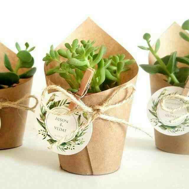 Recuerdos De Bautizo Con Cactus.Suculentas Y Cactus Para Recuerdos De Boda 6 Plantillas De