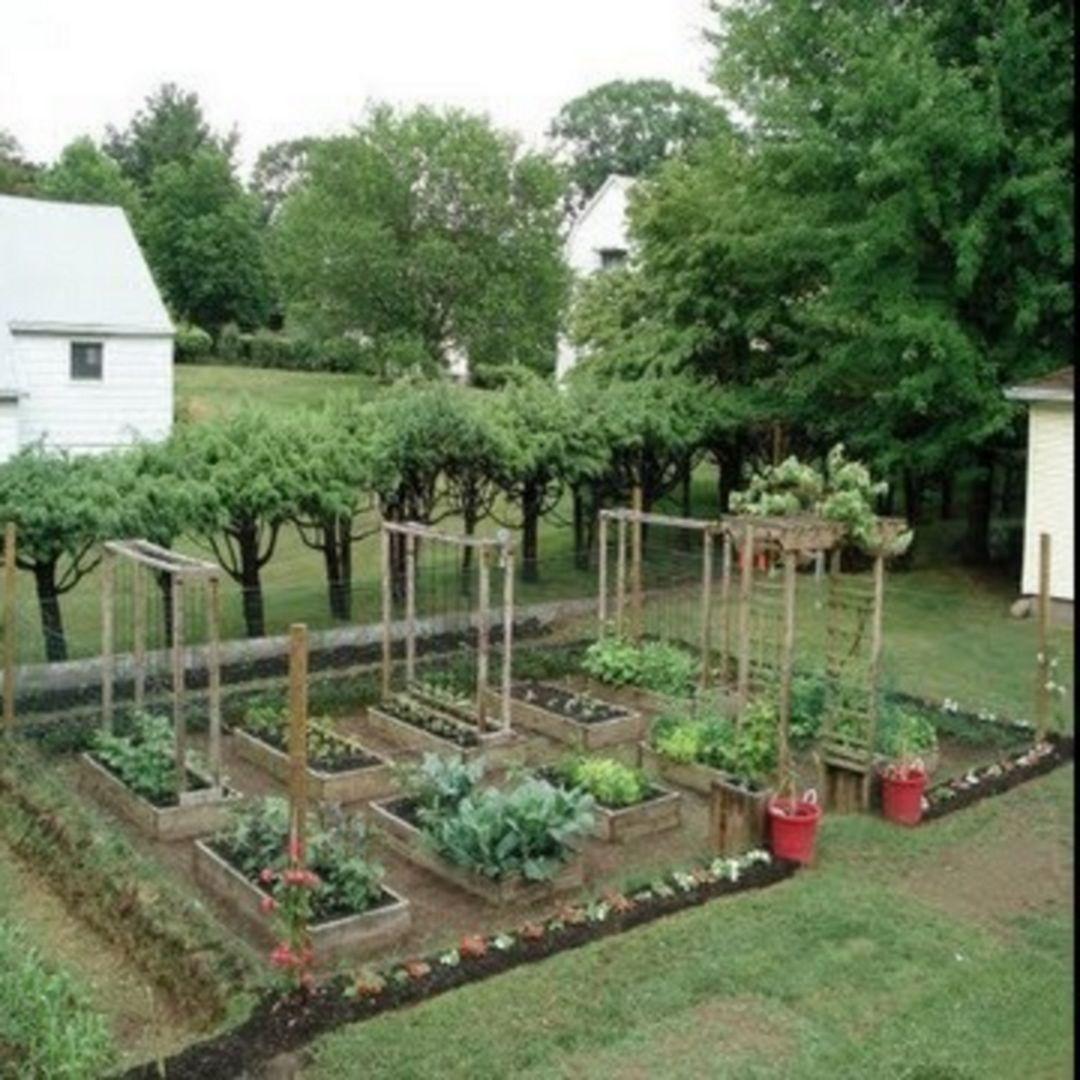 45+ Interesting Vegetable Garden Ideas For Backyard   Pinterest ...