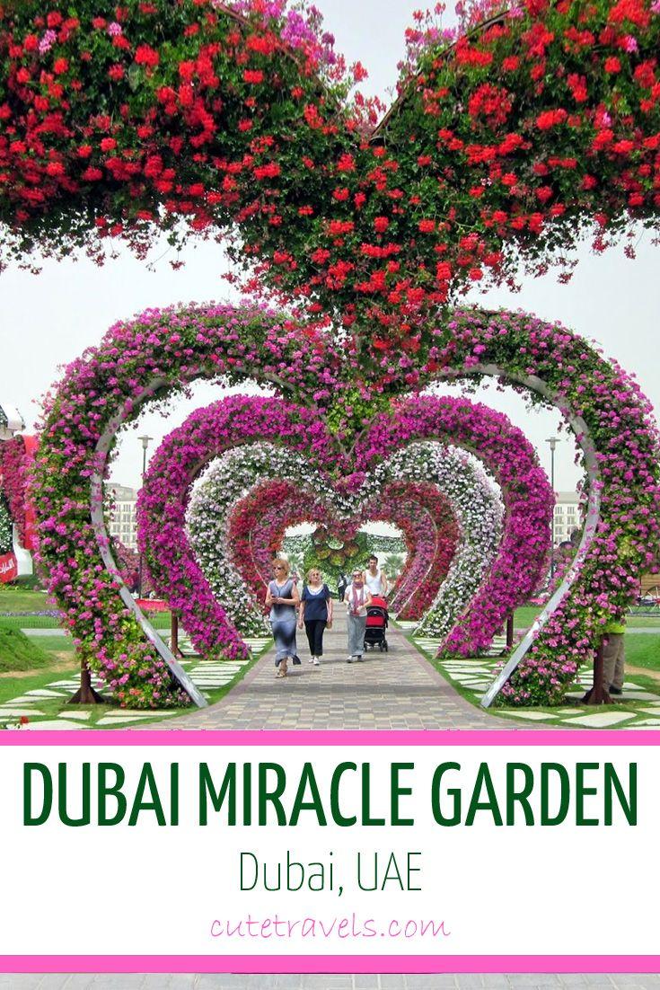 Dubai Miracle Garden The Largest Flower Garden In The World In