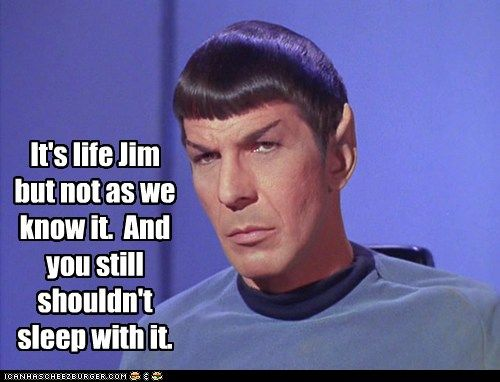 Not Everybody Likes Your Logic, Mr. Spock Star trek