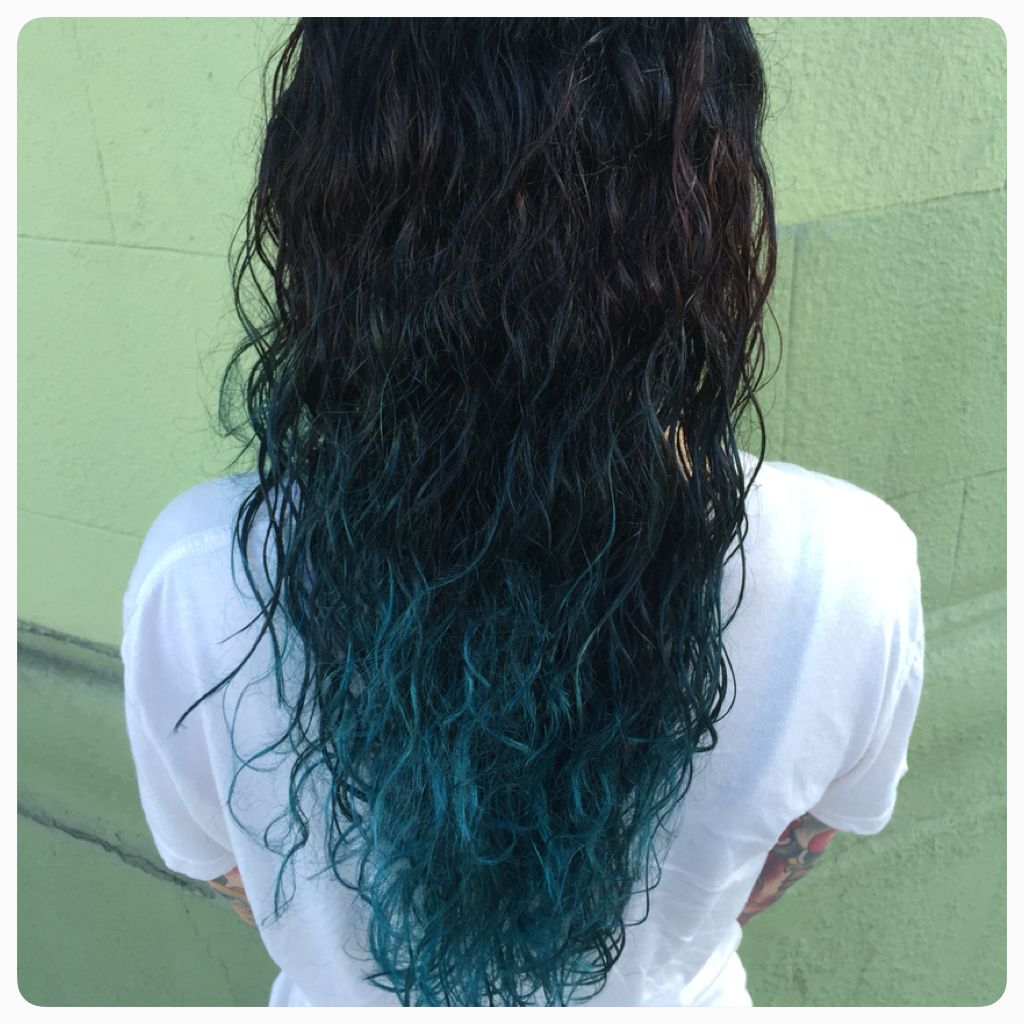 Black to Teal Ombre Color & Cut by Katey McMuffin at Glama-Rama! Oakland  #glamarma #ombre #tealhair #bluehair #culryhair #blackombre #blueombre