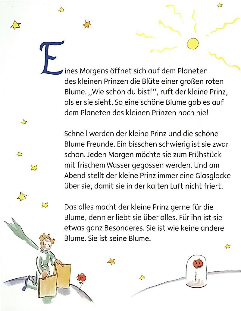 Pin De Janine Ristig En Nice Pictures Der Kleine Prinz