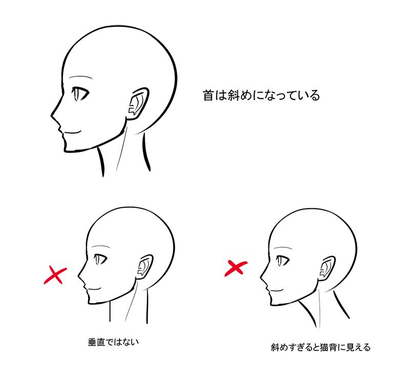 上半身のバランスを整えるキーパーツ 首の描き方 いちあっぷ 描き方 イラスト イラスト 書き方