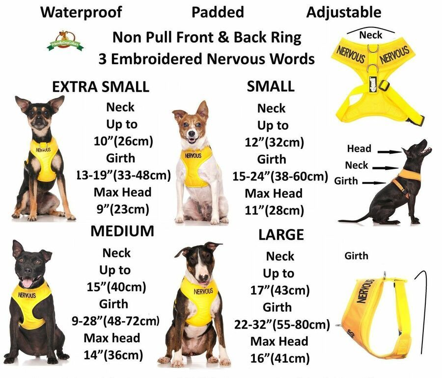Warning Dog Colour Coded Collar Lead Leash Harness Friendly Blind