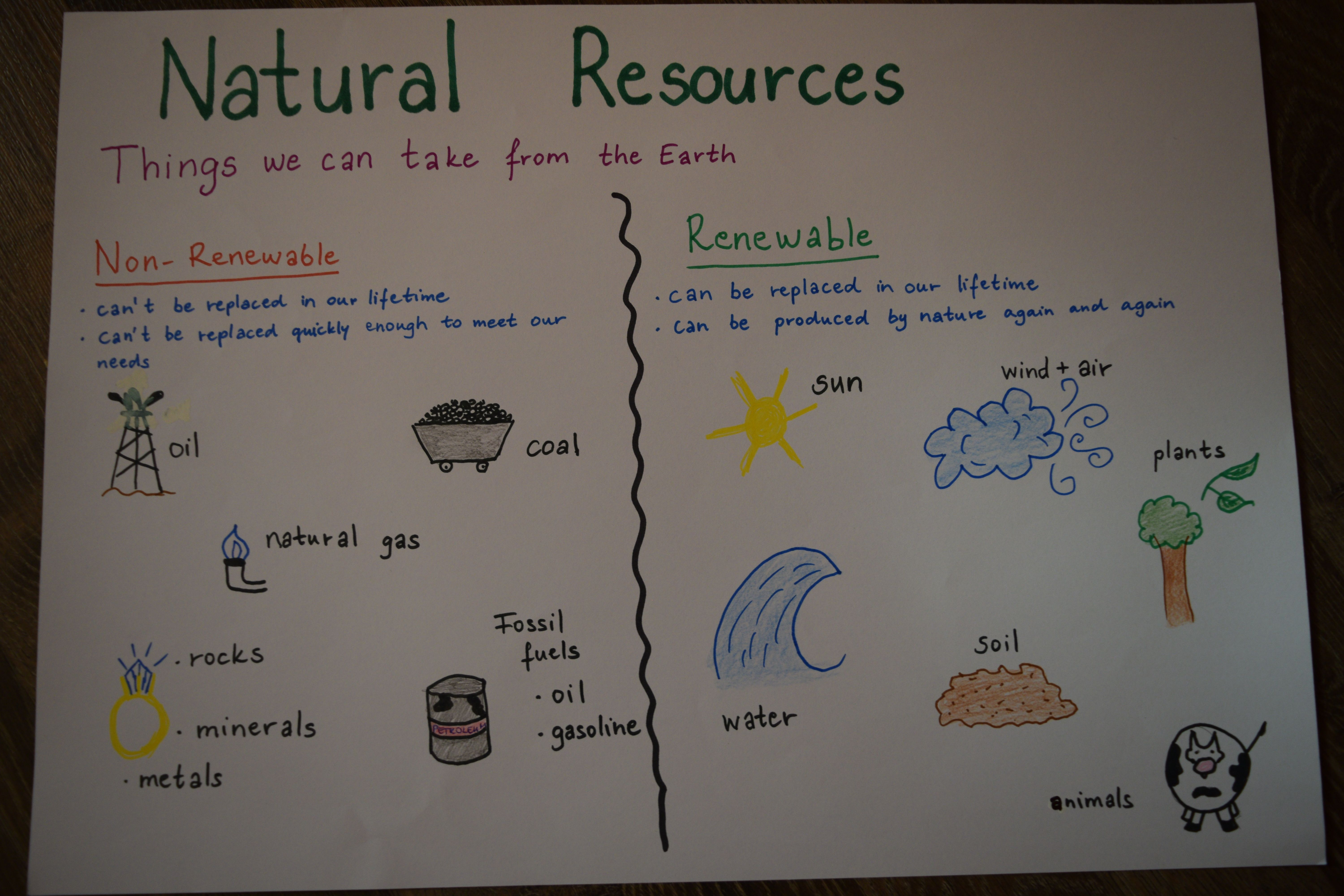 Natural Resources Anchor Chart For Kids