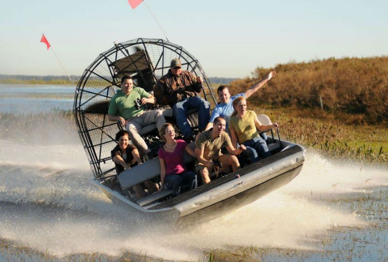 Everglades Tour With Airboat Wildlife Show And A Free