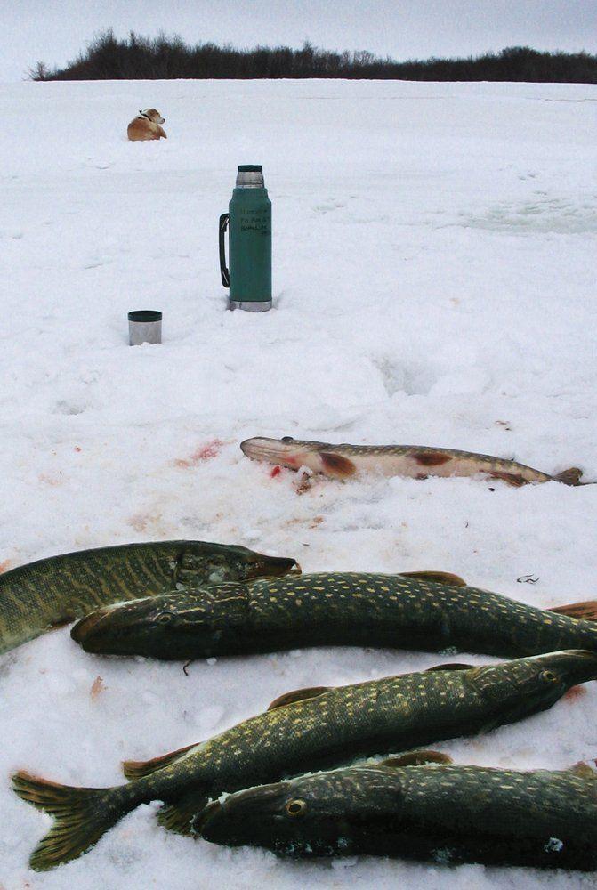 Ice fishing for pike on the Kuskokwim River, Alaska