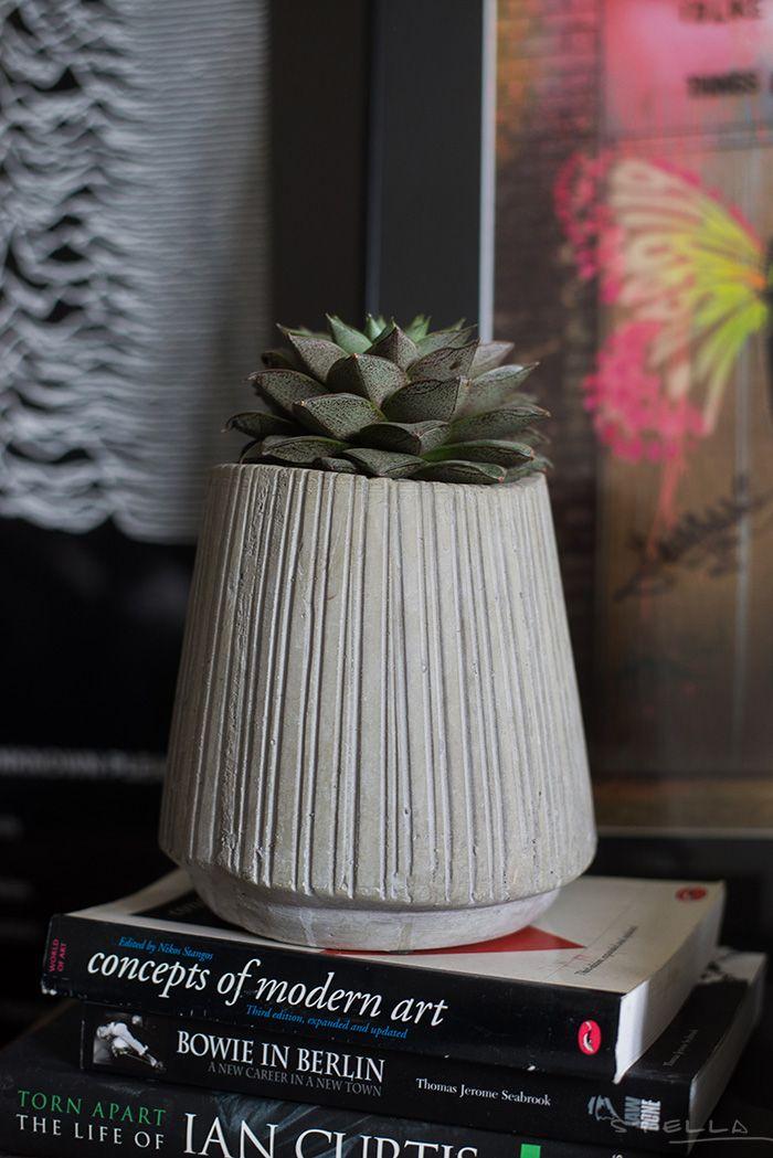 Succulent pot. Photo: Stella Harasek. See more: www.stellaharasek.com.