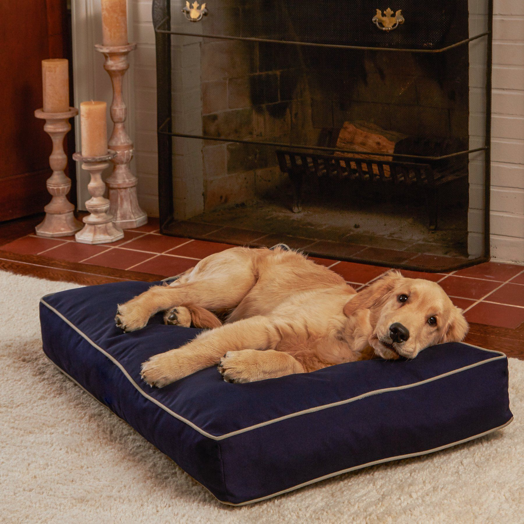 Greendale Home Fashions Happy Hounds Casey Rectangle Indoor/Outdoor Dog Bed  Small/24 x 36 Navy ** Click on … | Dog beds for small dogs, Outdoor dog  bed, Outdoor dog