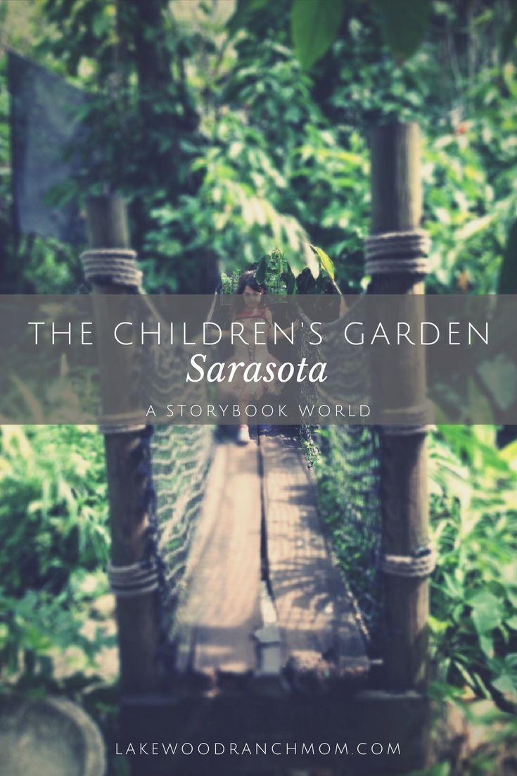 Contact Support Gardening for kids, Florida family