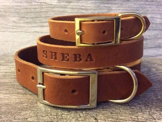 brown leather custom dog collar