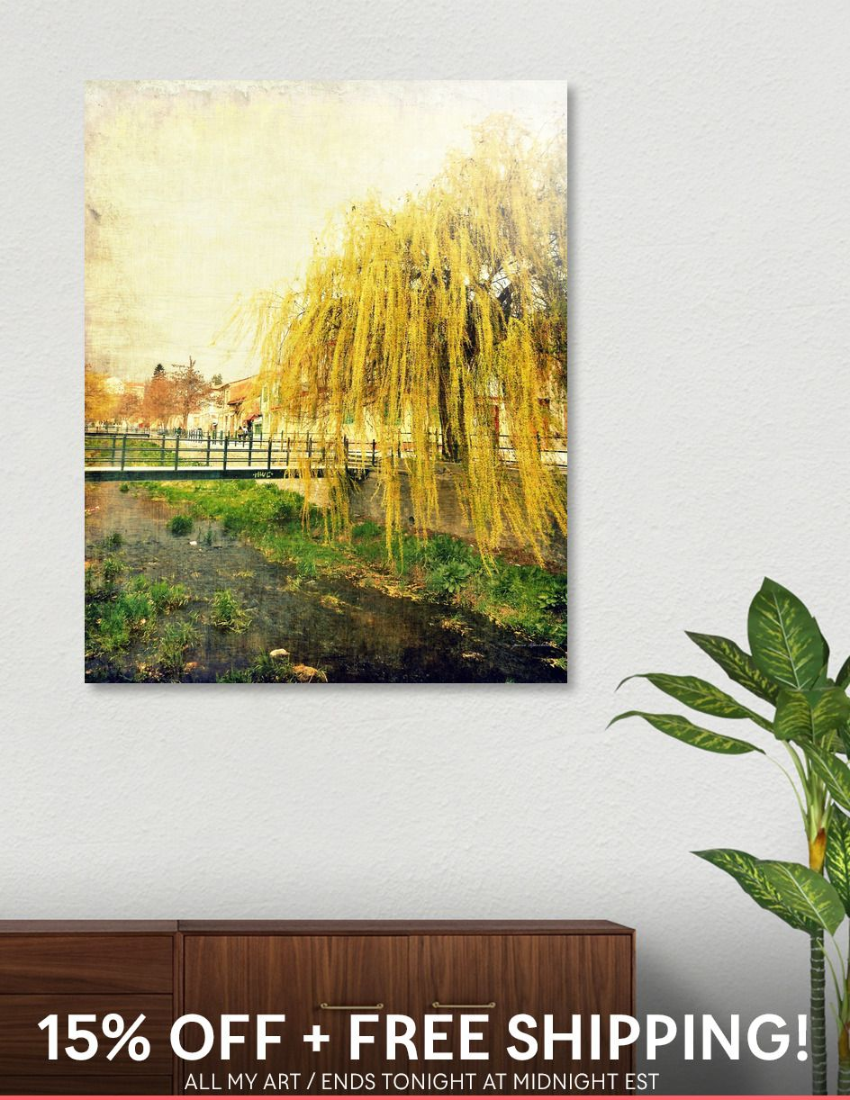 Willow Tree» Acrylic Glass Print by ARTbyJWP | Pinterest | Willow ...