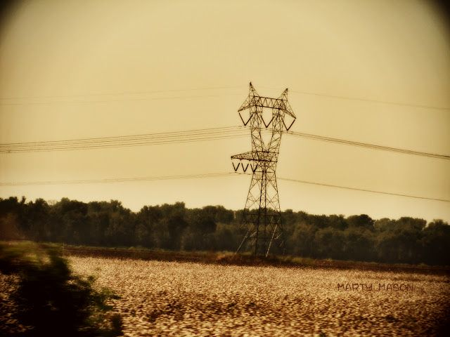 High wired in cotton country