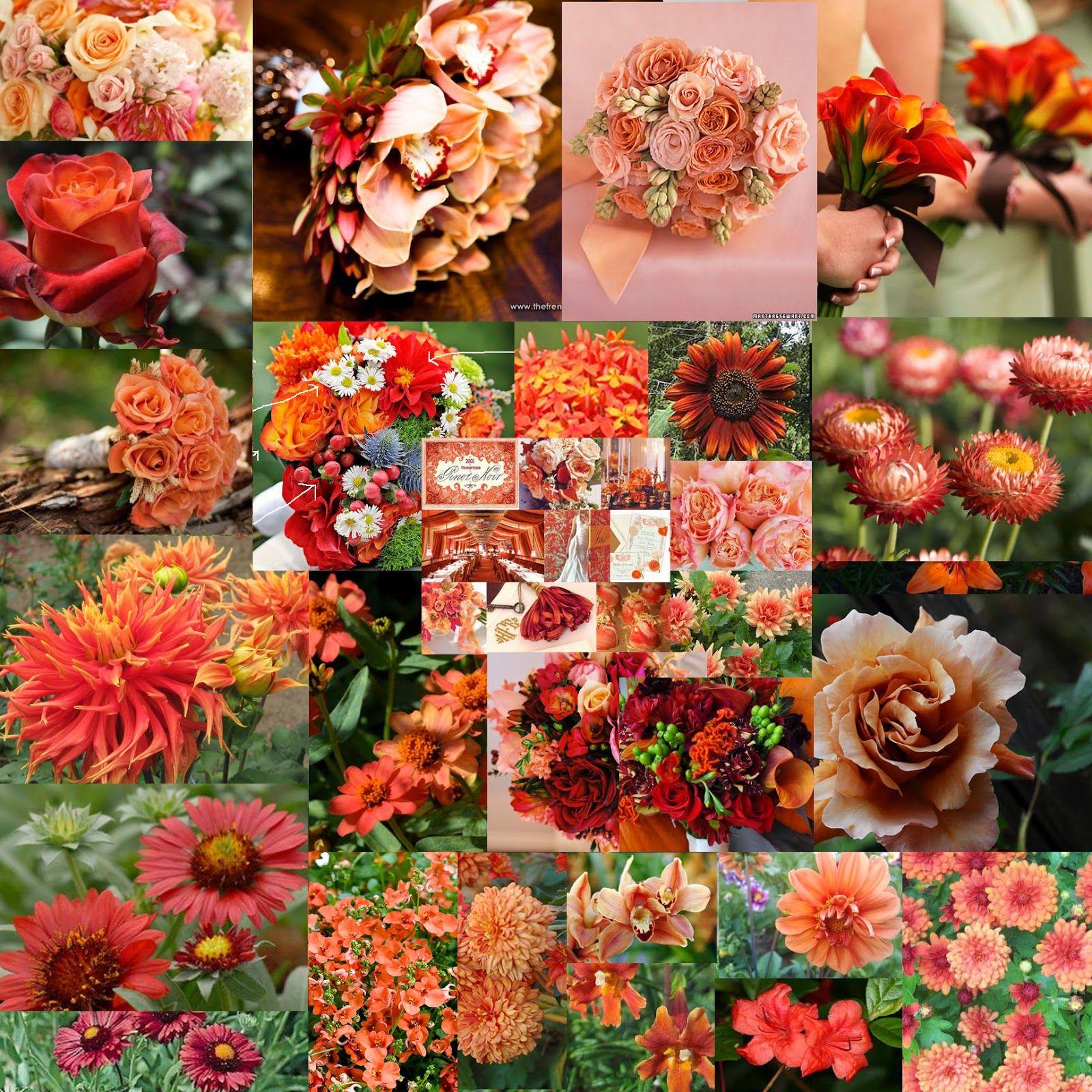 The autumn wedding wedding colours peach coral