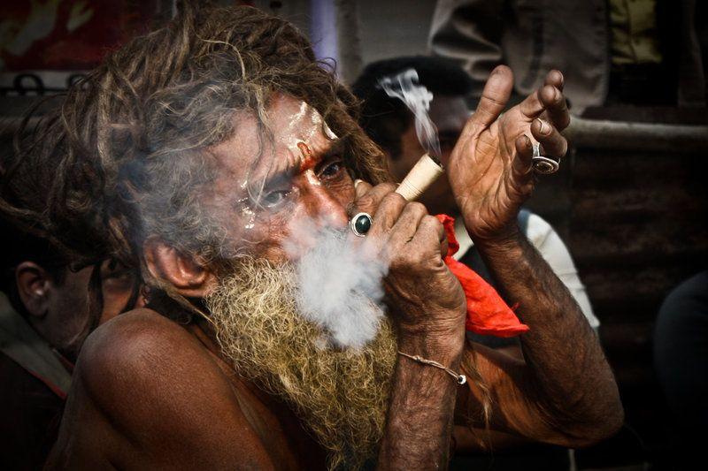 Sadhu best cannabis beards