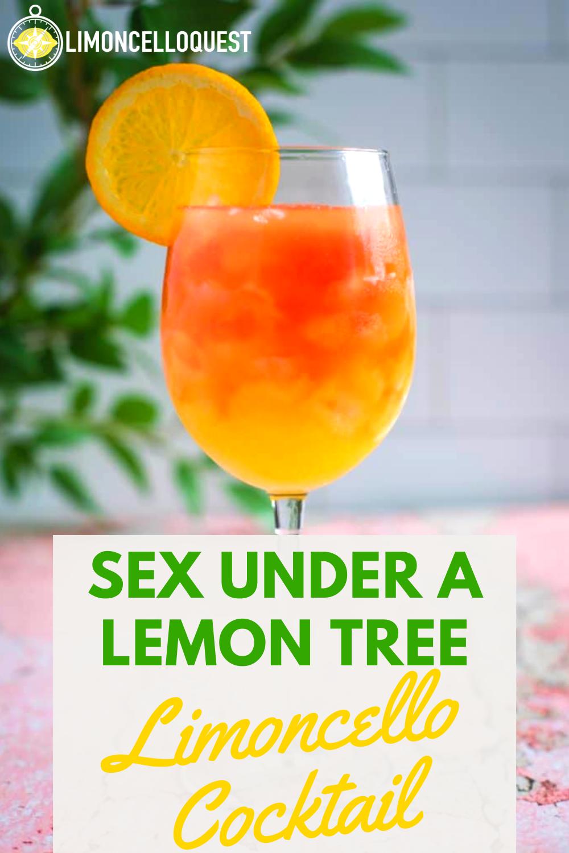 Sex Under A Lemon Tree - Limoncello Cocktail