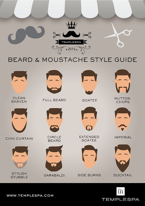 Beard Styles Amp Mens Grooming Guide At Temple Spa