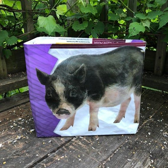 Up cycled grain bag tote / mini pig tote / recycled feed bag / reusable bag / up cycled feed ...