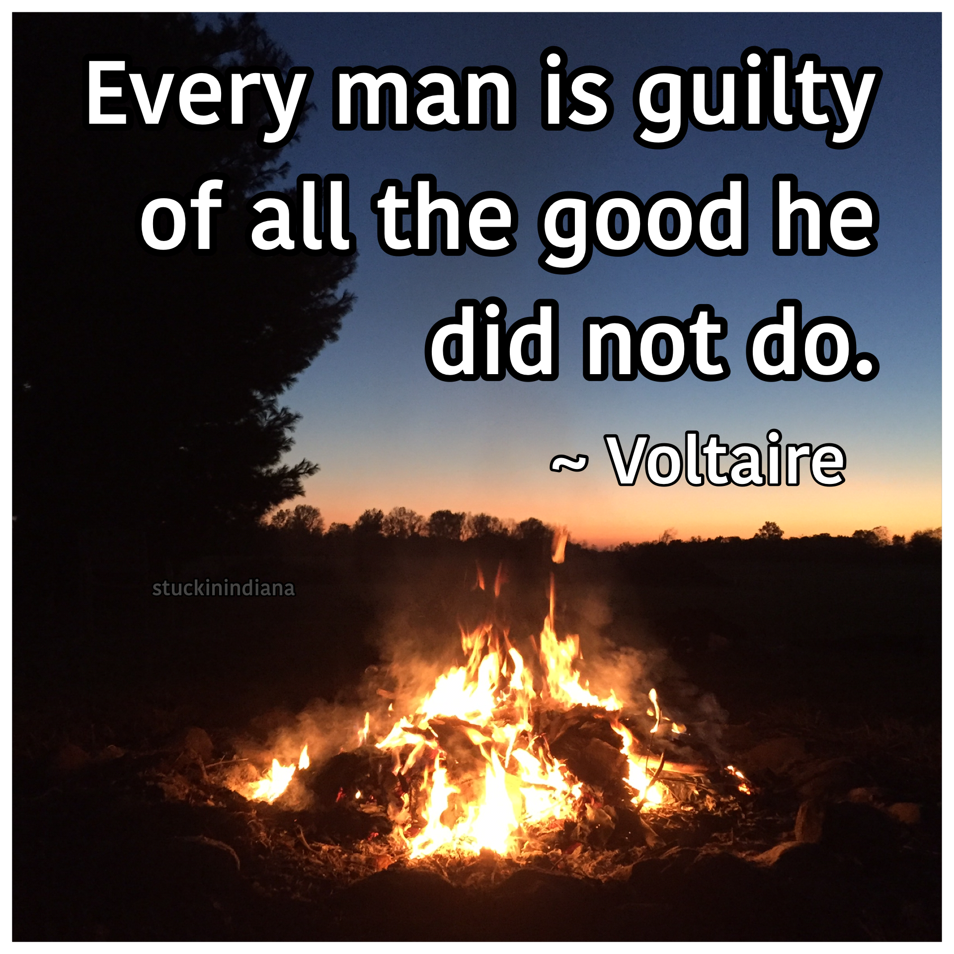 "Quotes Voltaire Every Man Is Guilty Of All The Good He Did Not Do.""  Voltaire"