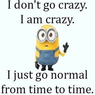 I Don't Go Crazy, I Am Crazy