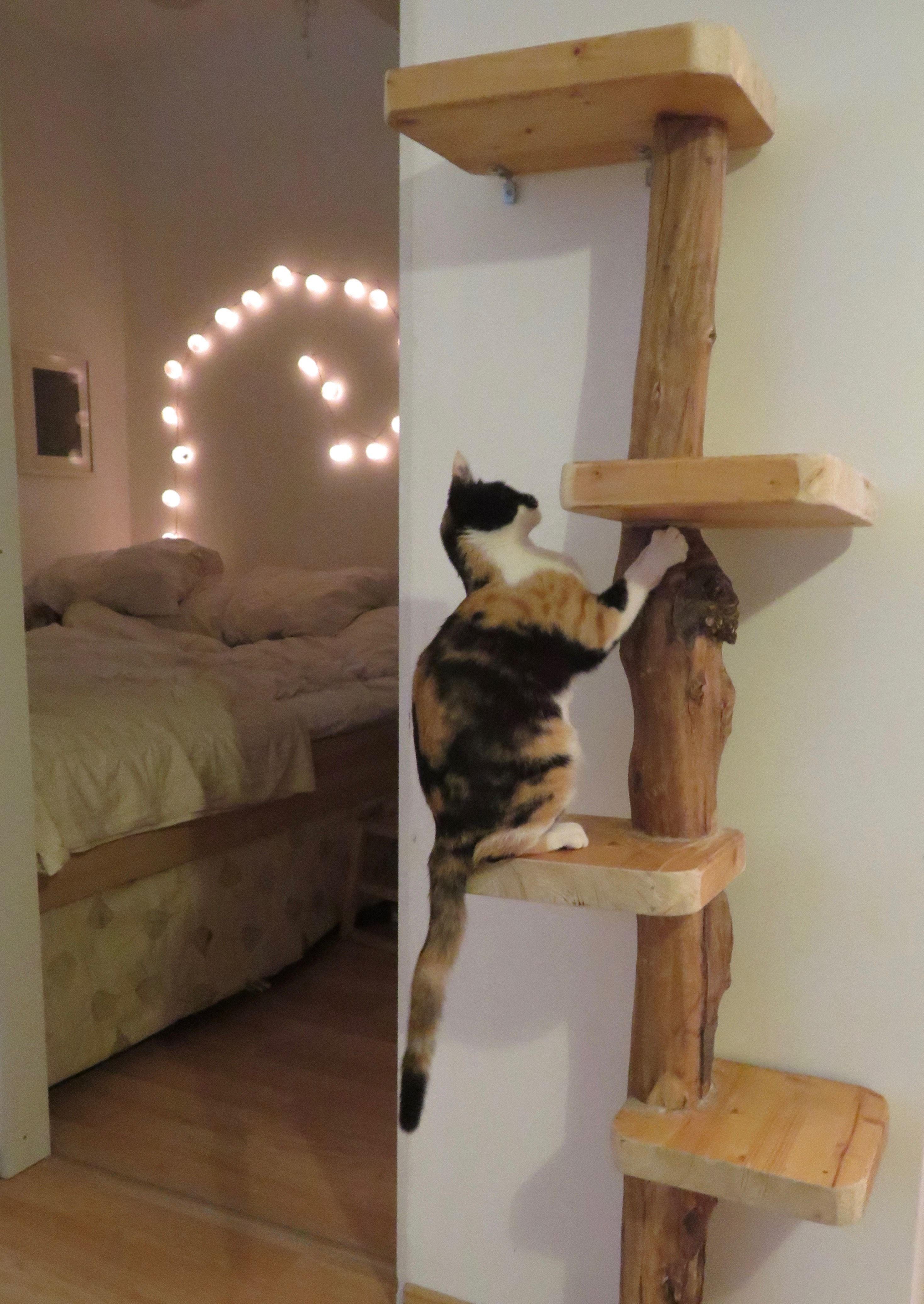 Cat tree by Neta Gov (With images) Diy cat bed