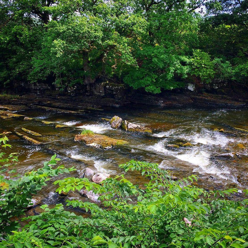 https://flic.kr/p/uHsTs1 | Line River #Cumbria #travel #river #killington #upsticksngo