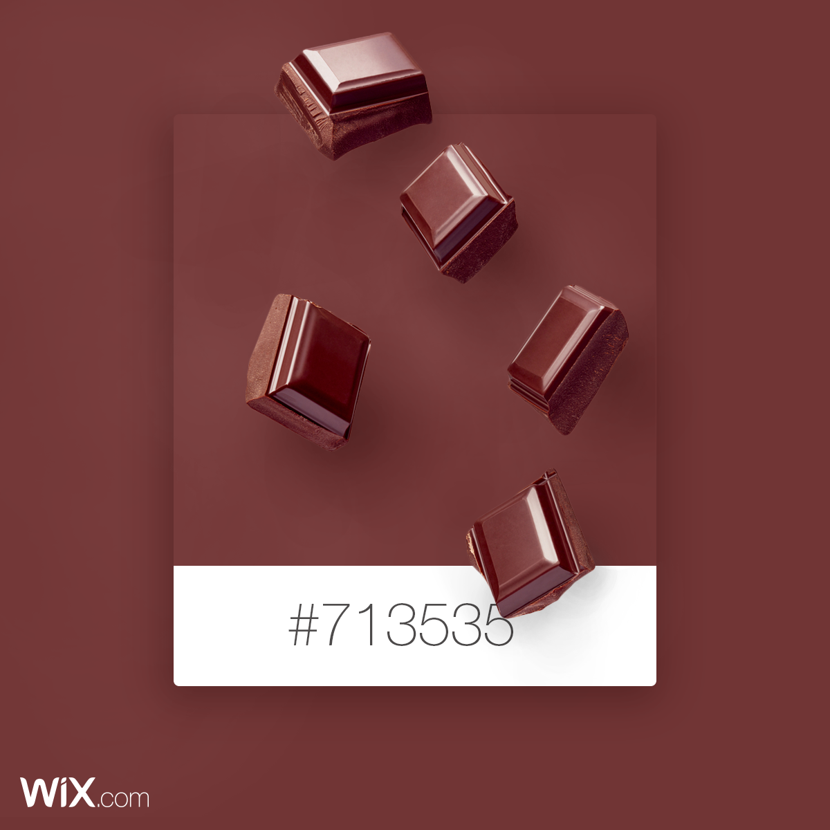 Color Palette Inspiration | Choco Brown | # 713535 | Color ...