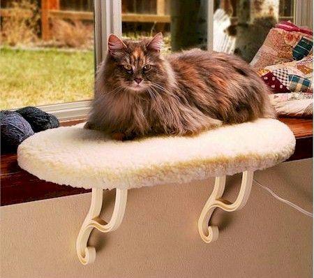 Heated Kitty Window Sill Seat   Cat Condos - Scratching ...