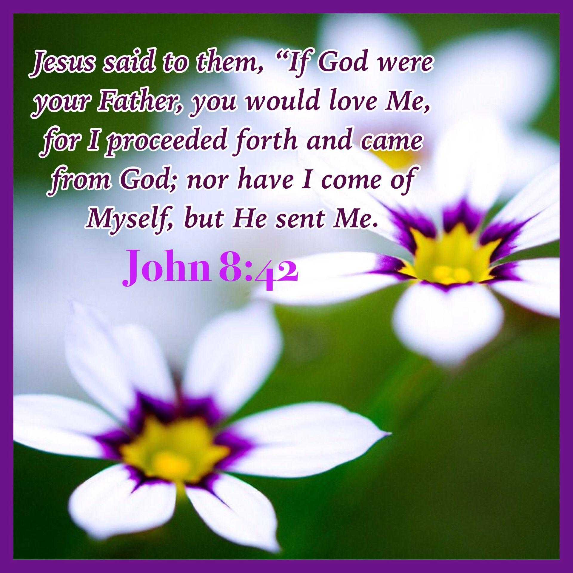 john 8 42 bible scriptures pinterest scriptures bible