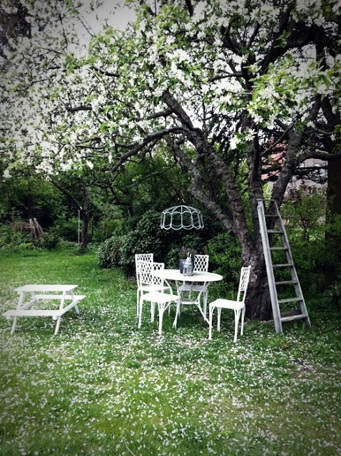 Adorable under tree hang out spot may put something like - What to put under raised garden beds ...