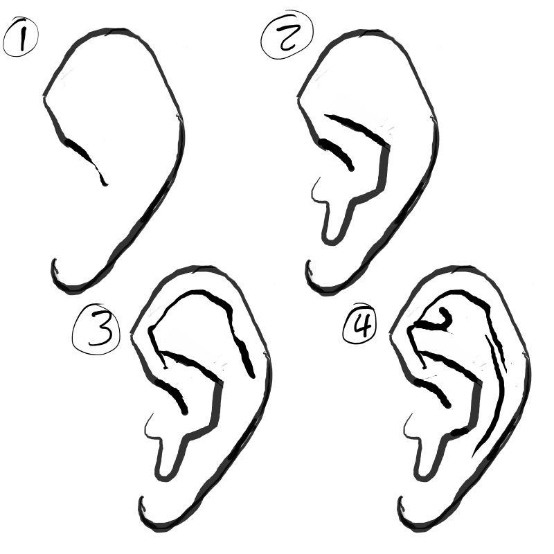 Browsing Human Anatomy On Deviantart Drawings Drawing Tutorial Ear Art