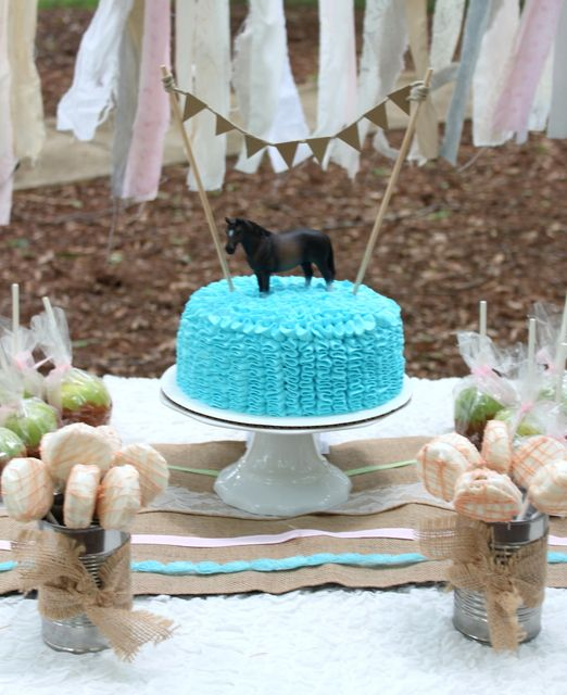 Vintage Horse Theme Birthday Party Ideas