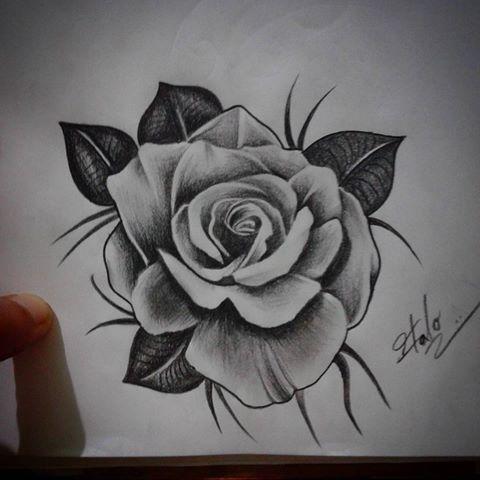 Imagen Relacionada Rose Drawing Tattoo Tattoo Styles Rose Flower Tattoos