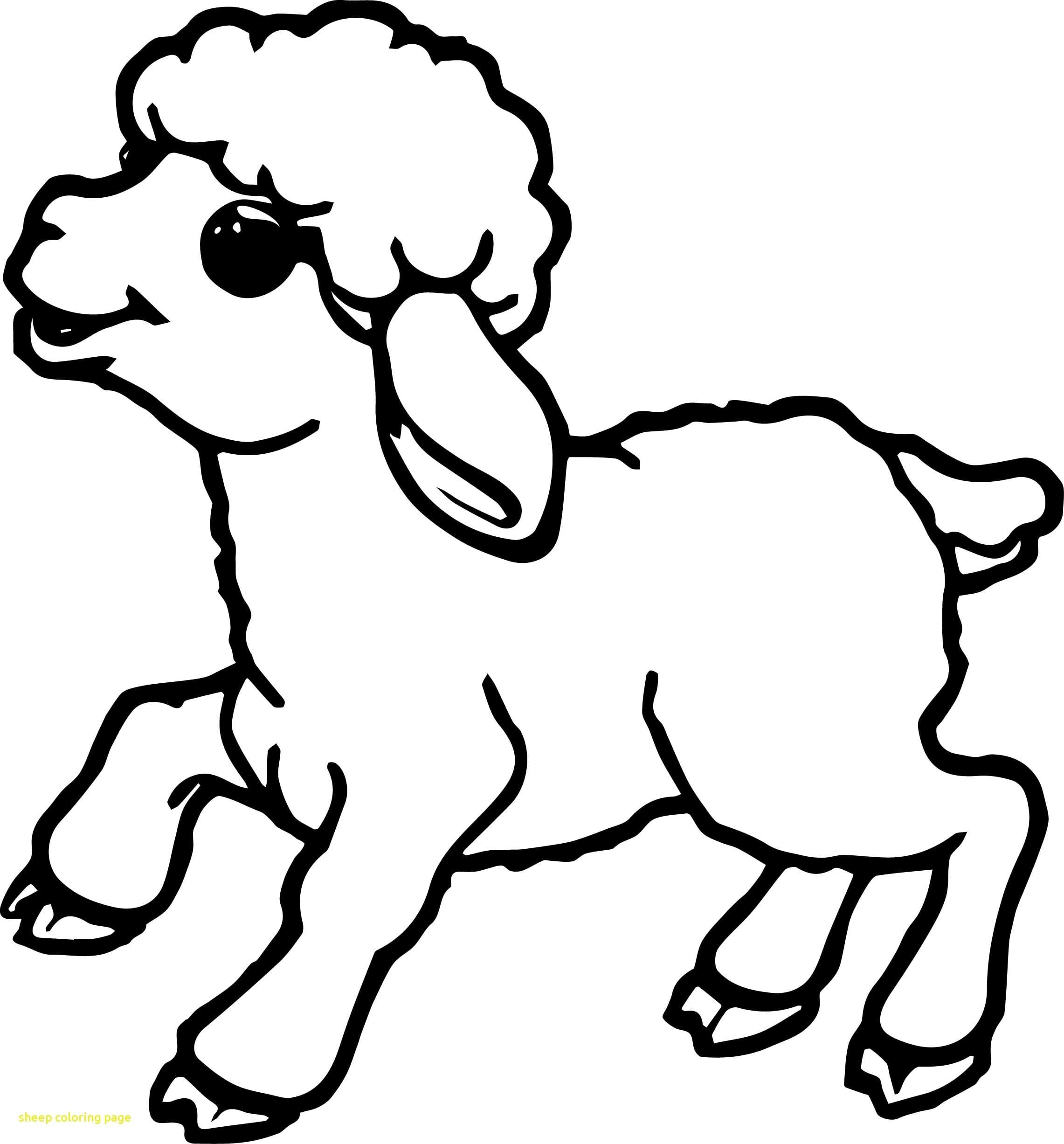 Impressive Coloring Page Of A Sheep Unique Des 2785 Unknown 4