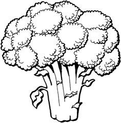 Vegetables To Color Vegetable Vegetable Coloring Pages Vegetable