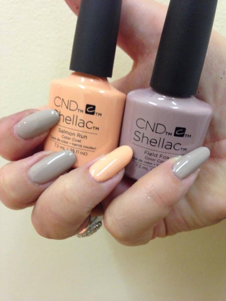 Cnd Salmon Run , Field Fox Colours I Have At The Moment