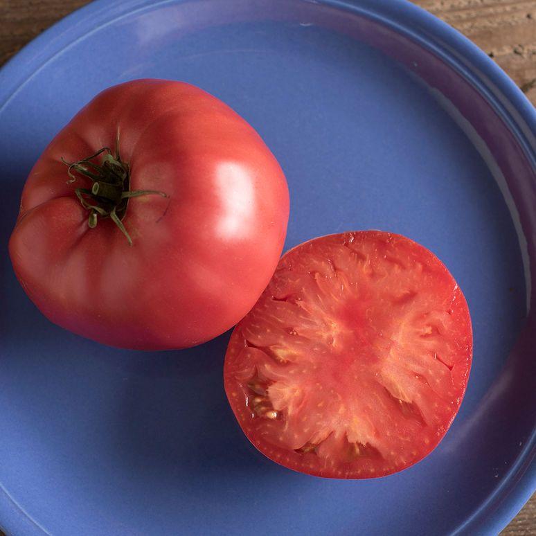 Brandywine Organic Tomato Seed Tomato Seeds Brandywine 400 x 300