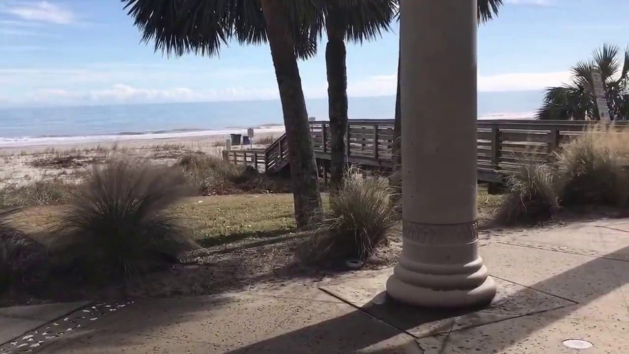 What's the weather like in January in Myrtle Beach