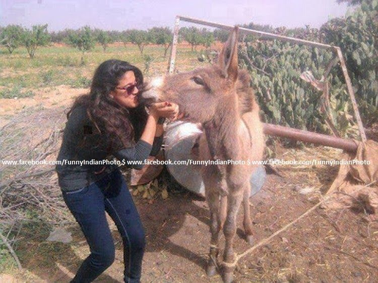 Sex pic Donkey with girls
