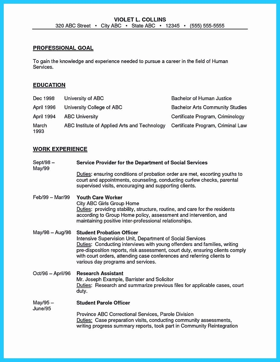 Correctional Officer Resume Examples Best Of Perfect
