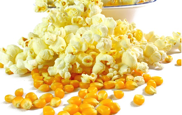 Can Dogs Eat Popcorn Is Popcorn Good Or Bad For Dogs Can Dogs Eat Corn Butter Popcorn Dog Food Recipes