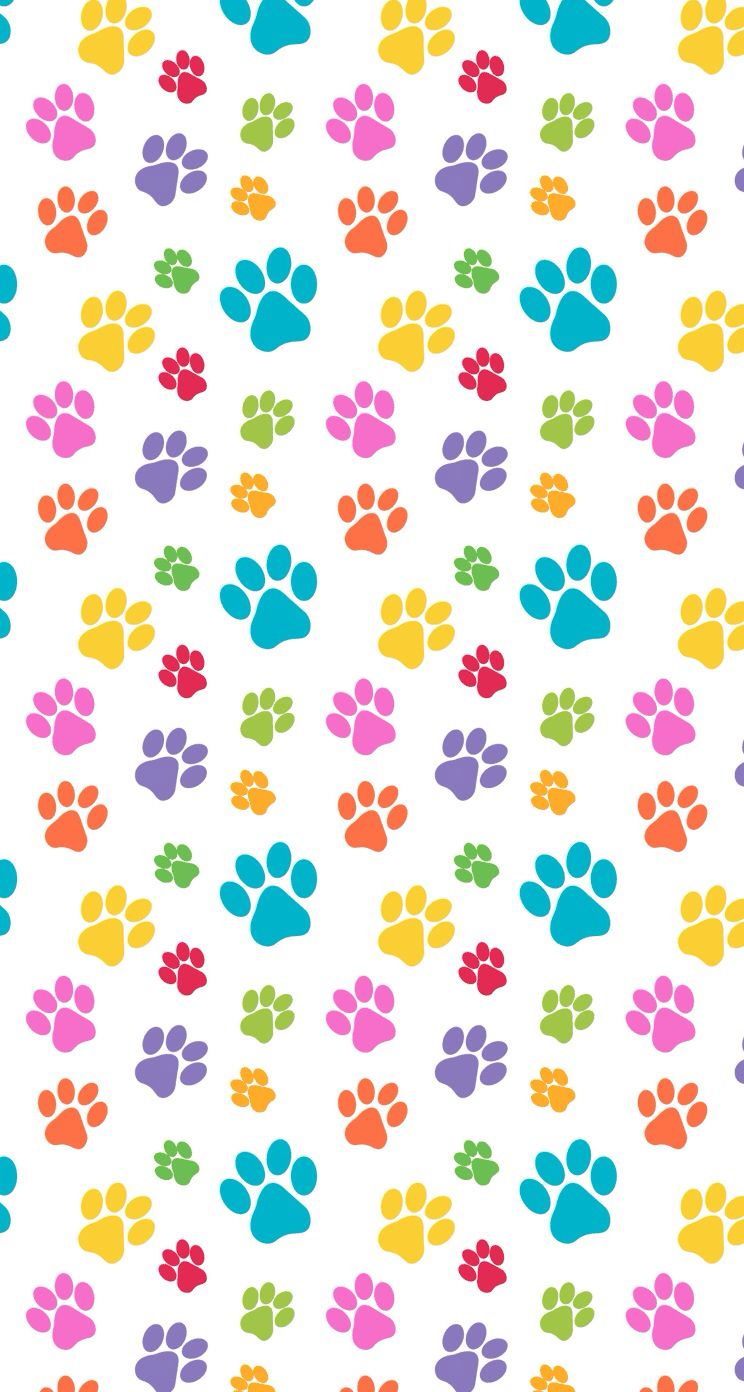 pets Paws print pattern colorful cute design wallpaper ...