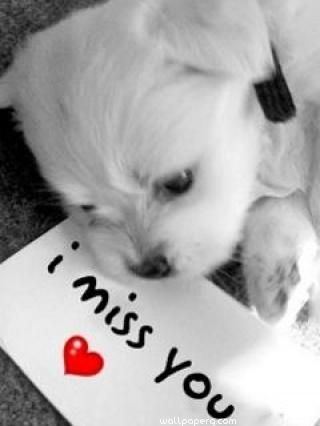 Download I Miss You Note   Miss You Hd Wallpapers For Your Mobile Cell  Phone.