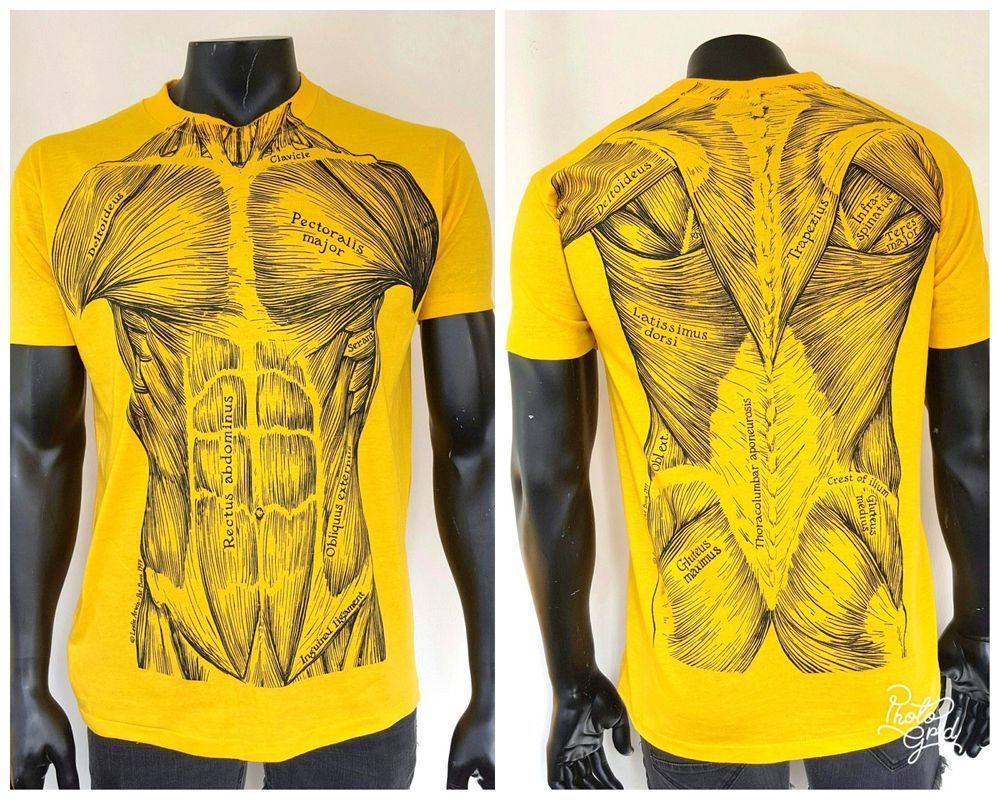 70s Muscular System T Shirt Leslie Arwin Pat Bova Anatomy Muscle Tee