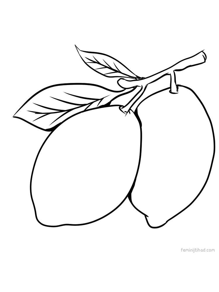 Lemon Coloring Picture Print Free Coloring Pages Fruit Coloring Pages Free Coloring Pages