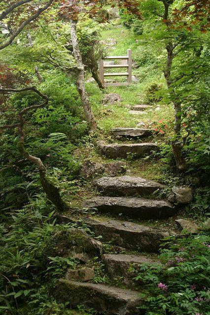 Photo of garden path #gardenpaths garden path in Kyoto by Reynaud Glenat