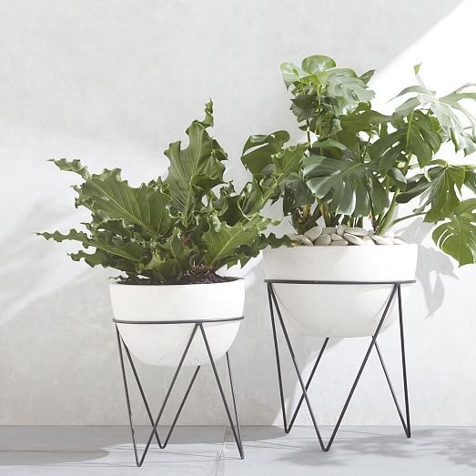 Iris Planter Chevron Stand Indoor Planters Planters Planter Stand