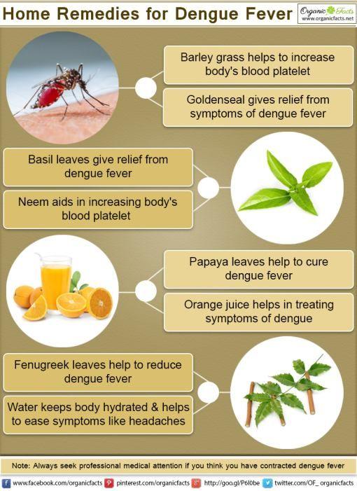 how to get rid of fruit flies with orange juice