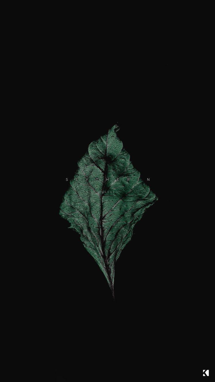 Wallpapers No 419 Hogwarts Houses Dark Dead Botanicals Kaespo Design Hogwarts Houses Iphone Wallpaper Tumblr Aesthetic Aesthetic Wallpapers